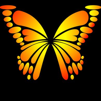motyl-zsp